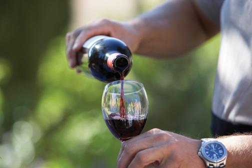 Affordable wine tasting at Orfila Vineyards