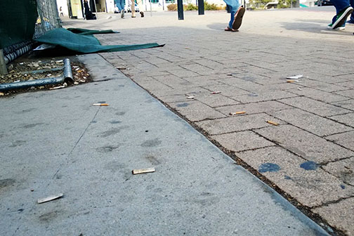Discarded cigarette butts on campus. Photo by Jimmy Thibault, Staff Photographer
